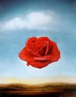 Meditative Rose de Salvador Dali, 1958